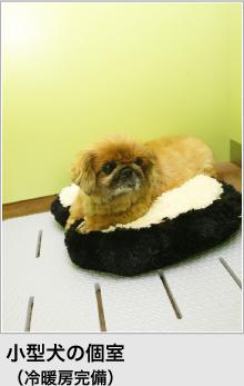 小型犬の個室